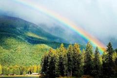 rainbow ©